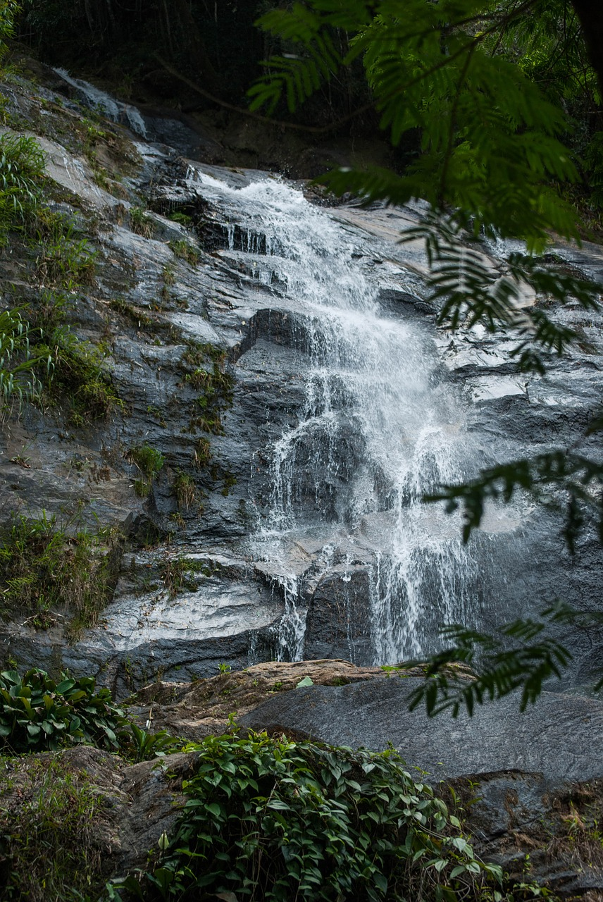 Picture of a waterfall in Tijuca Park