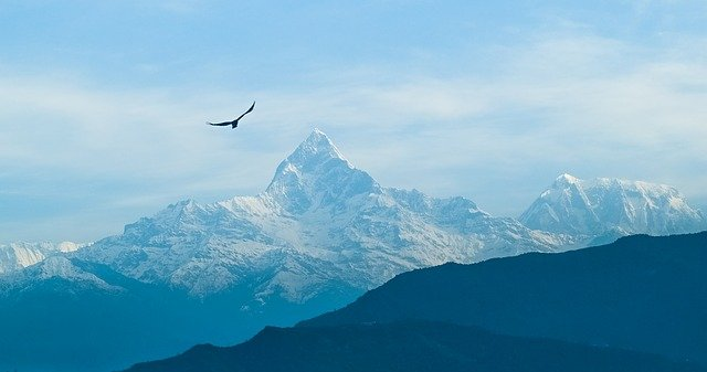 Large bird flying over the sharp mountain peaks of Nepal
