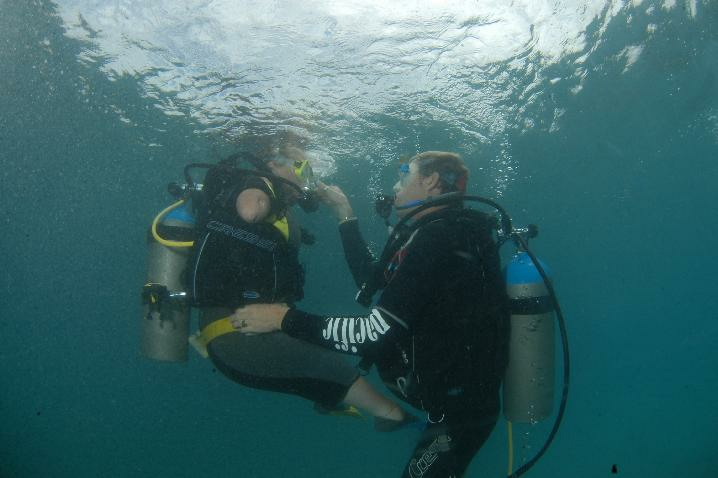Diving is spectacular in Curacao