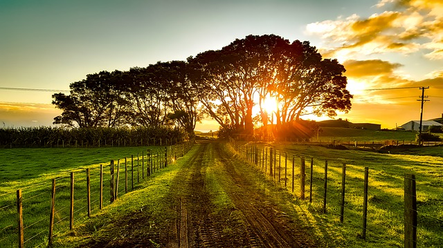 The beautiful landscape of New Zealand glows in the morning light