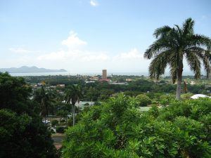 Stunning palm trees rech for the bright blue sky in this picture of Managua Nicaragua